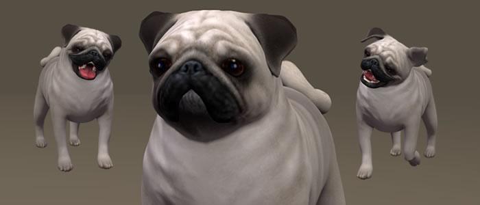 Mister Puggles 3D Pug